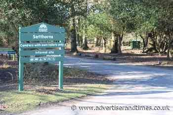 Closed campsites will 'cost New Forest £16m' | Advertiser and Times - New Milton Advertiser and Lymington Times