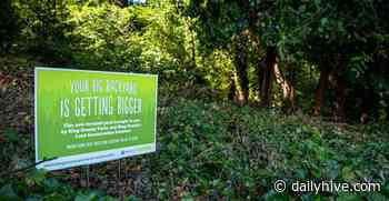 A new 5-acre forest park is coming to North Highline | Urbanized - Daily Hive