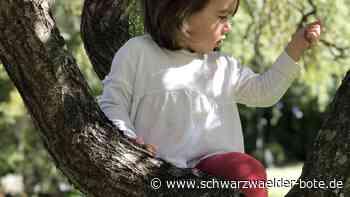 Horb a. N.: Wirbel um Waldkindergarten - Schwarzwälder Bote