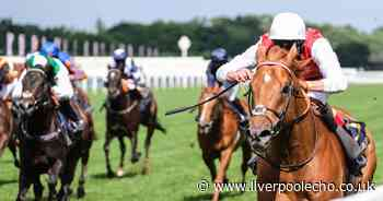 Horse Power: Golden Horde can land July Cup at Newmarket