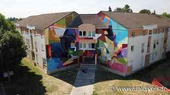 Balade street-art à vélo Dans la ville Lieusaint - Unidivers