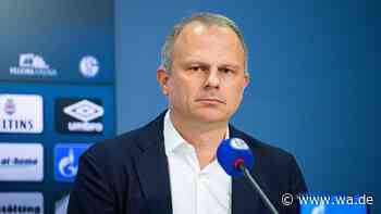 Schalke Transfer-News: Schneider über Strategie - Ayhan für Skrzybski? - Westfälischer Anzeiger