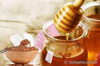 O que acontece no seu corpo quando você consome mel e canela - Arial