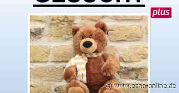 Teddy verzweifelt gesucht in Riedstadt - Echo Online