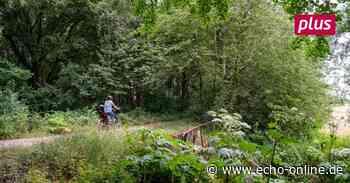 Riedstadt tritt Landschaftspflegeverband bei - Echo Online
