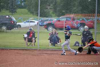 Return of baseball offering relief for Cochrane families - Cochrane Today