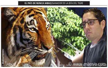 Ganador de la rifa del tigre - Milenio