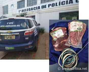 Funcionário é preso suspeito de furtar carne em frigorífico de Nova Andradina - Portal do Jornal A Crítica de Campo Grande/MS
