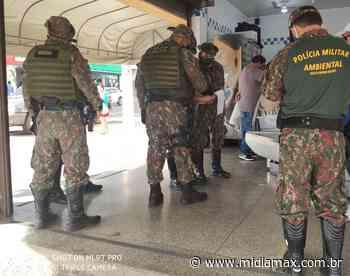 Polícia fiscaliza 12 toneladas de pescado em Campo Grande e encontra irregularidade - Jornal Midiamax