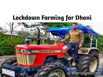Most Expensive Swaraj Tractor Bought by Mahendra Singh Dhoni; Read on to Know What it Offers - Krishi Jagran