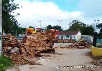 Riesgo sanitario por basura en un parque de Izamal - El Diario de Yucatán