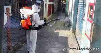 Desinfectan los locales del mercado municipal en Cerro Azul - La Opinión