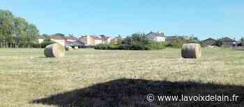 Saint-Denis-lès-Bourg - 22 pavillons et 21 logements locatifs seront livrés par Ain habitat au Clos des Viards - La Voix de l'Ain