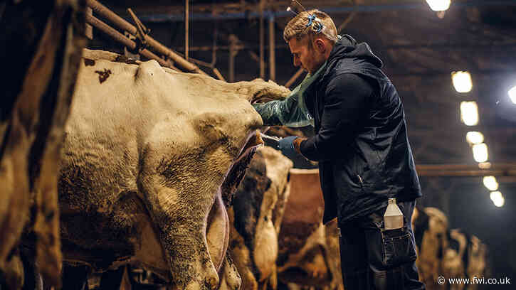 Vets to provide support for sustainable livestock farming