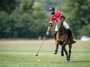 Polo picture special: King Power Gold Cup continues at Cowdray Park - Chichester Observer