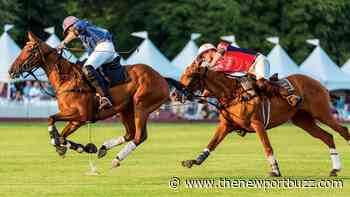 Newport Polo to Host Independence Cup this Saturday - Newport Buzz
