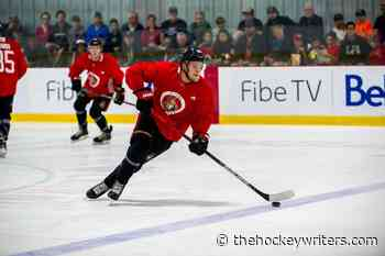 A Look at the Ottawa Senators' Young Defensemen - The Hockey Writers