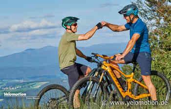 E-MTB Test 2020 mit knapp 60 aktuellen Rädern Welches E-Mountainbike erklimmt den Thron? - Velomotion - Velomotion