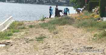 BC Coroners Service called to West Kelowna after body pulled from Okanagan Lake - Globalnews.ca