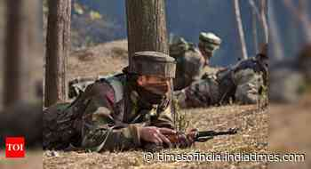 2 terrorists killed in J&K's Kupwara; ammunition, Pakistan currency recovered