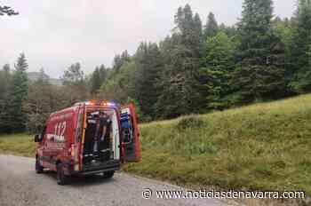Rescatado un excursionista herido al caerse por un barranco en la selva de Irati - Noticias de Navarra