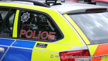 Man ordered from car by gang in 'terrifying ordeal'