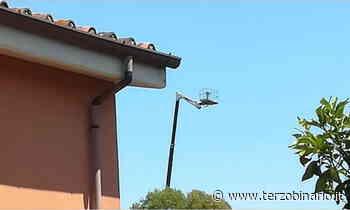Asilo nido minacciato da onde elettromagnetiche, allarme a Piana del Sole - Terzo Binario News - TerzoBinario.it