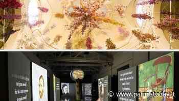 Meravigliose immersioni d'arte a Parma - ParmaToday