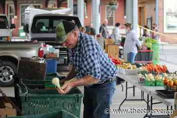 Petrolia Farmers' Market adjusts to COVID-19