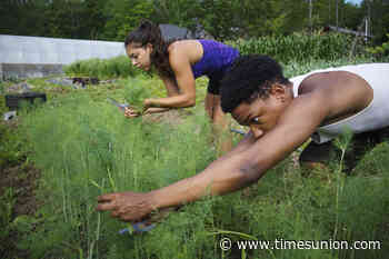 Soul Fire Farm, farming for social justice, plans to expand