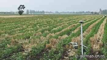 Intelligente Technologie verändert Antlitz traditioneller Landwirtschaft - Radio China International