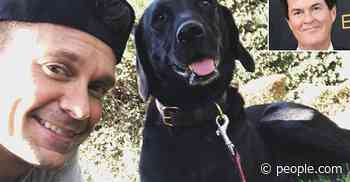 Ryan Seacrest Reveals His Dog Georgia Was a Gift from American Idol Creator Simon Fuller - PEOPLE