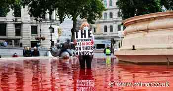 Trafalgar Square fountain turns blood red in animal rights protest