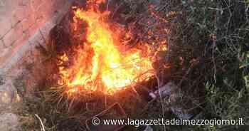 Bari, droni in azione contro gli incendi nelle campagne: denunciati 3 piromani - La Gazzetta del Mezzogiorno