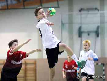 Handball: Die Bundesliga ins Visier genommen - Märkische Onlinezeitung