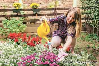 Down the garden path! Gardening is an effective way to cope with stressors of daily life