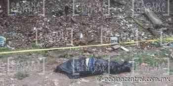 Encuentran otro cuerpo en Palenque de Ibarrilla - Página Central