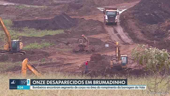 Segmento de corpo é encontrado em Brumadinho durante preparação dos bombeiros para retornar às buscas - G1