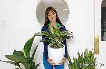 A celebrity gardener: see how Aubrey Miles enhanced her home with plants - Manila Bulletin