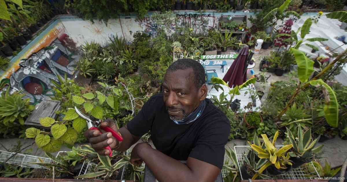 Gangsta Gardener Ron Finley swears by growing your own food - Los Angeles Times