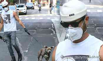 Justin Theroux shows off his guns in sleeveless Flavor Flav t-shirt as he takes Kuma for walk in NYC