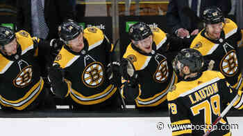 Bruins reveal training camp roster