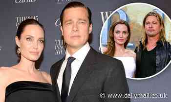 Brad Pitt and Angelina Jolie divorce proceedings have been 'slowed down because of COVID-19'