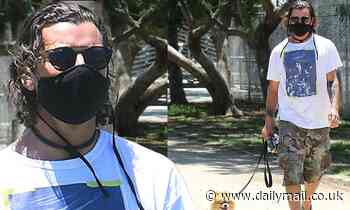 Gavin Rossdale sports a face mask as he hits up a local park with his beloved pup Chewy
