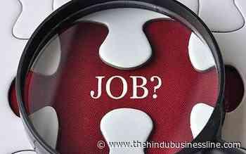 82.33% working professionals seek Government jobs: Report - BusinessLine