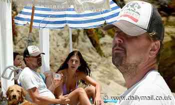 Leonardo DiCaprio, 45, enjoys day at the beach with girlfriend Camila Morrone, 23, and dog in Malibu
