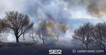 Estabilizado un incendio forestal declarado en el paraje Monte Malagón de Belalcázar - Cadena SER