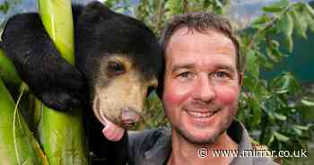 Man fell in 'love at first sight' with cute bear - with life-changing results