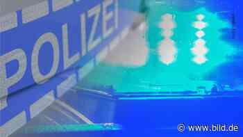 Bernburg: Mieter (35) schießt brutale Einbrecher in die Flucht - BILD