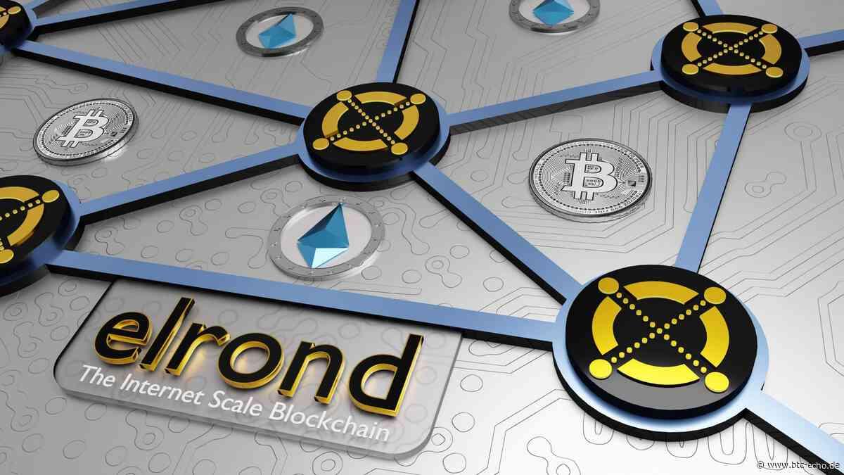 Elrond-Kurs (ERD): Ready to dump oder Pump mit Substanz? - BTC-ECHO   Bitcoin & Blockchain Pioneers